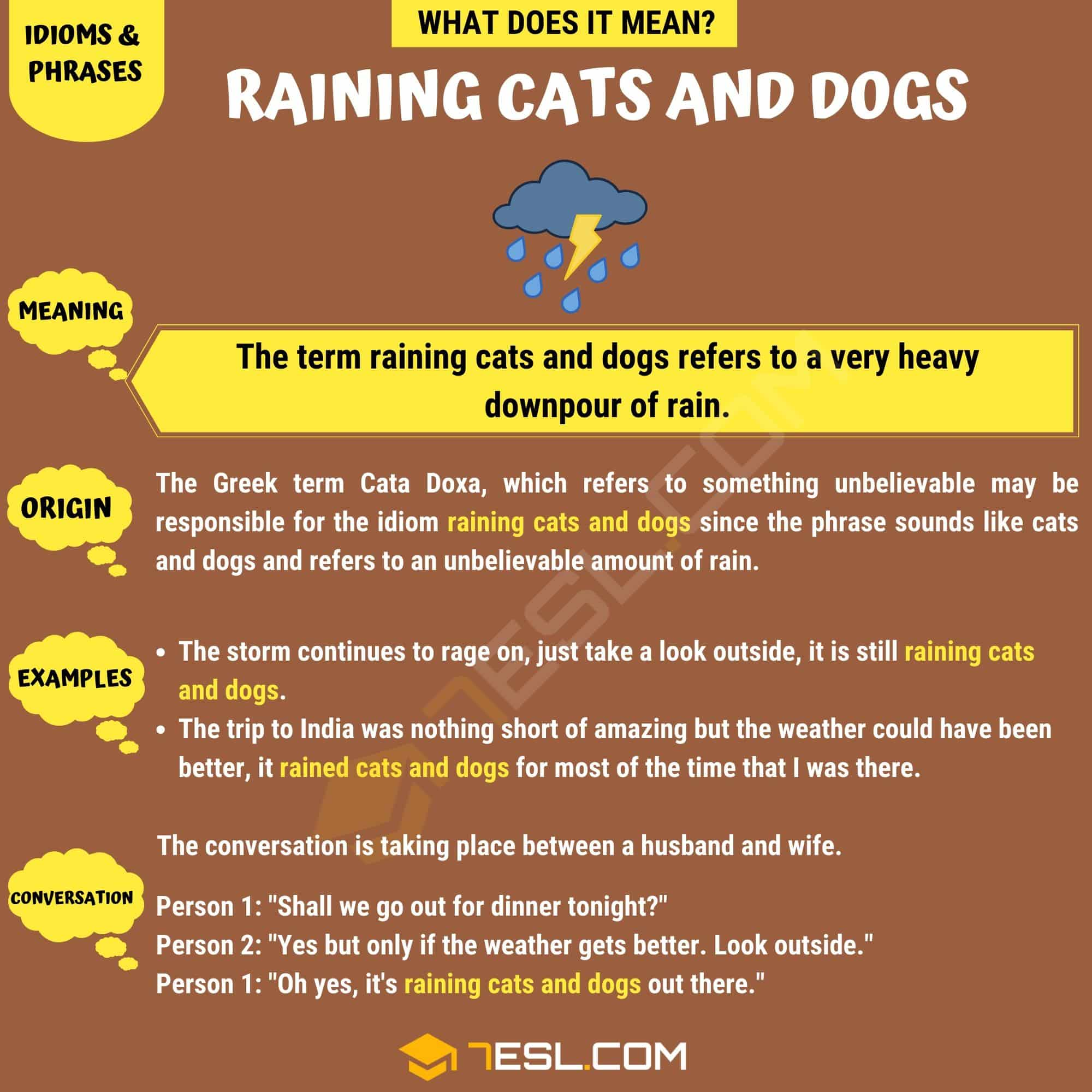 Raining Cats And Dogs How To Use This Popular Term Correctly 7 E S L