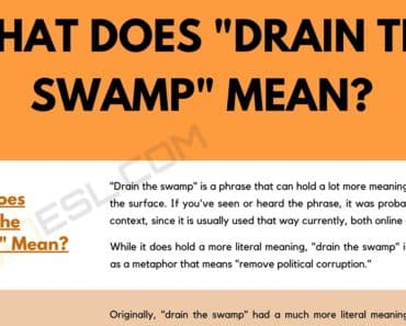 "What Does ""Drain the Swamp"" Mean, and How Do You Use It? 9"