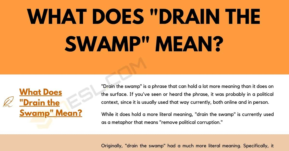 """What Does """"Drain the Swamp"""" Mean, and How Do You Use It? 1"""