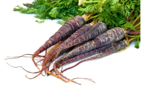 Purple Vegetables: List of Purple Veggies with Interesting Facts and Pictures 4