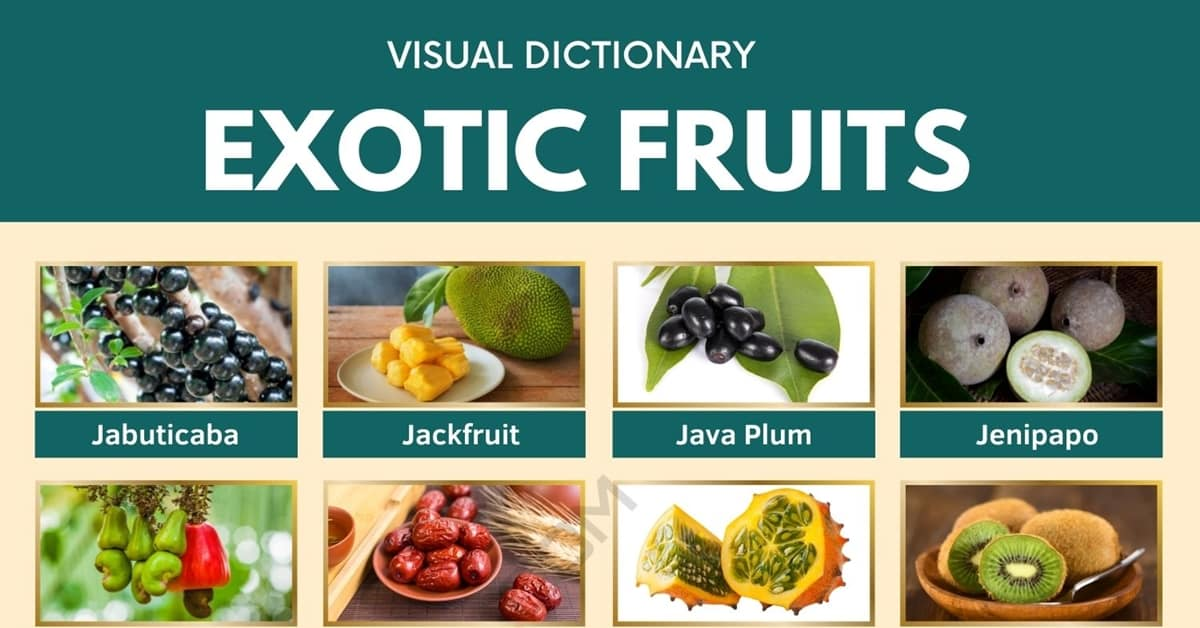 Exotic Fruits | List of 75+ Exotic Fruits You've Probably Never Heard Of 1