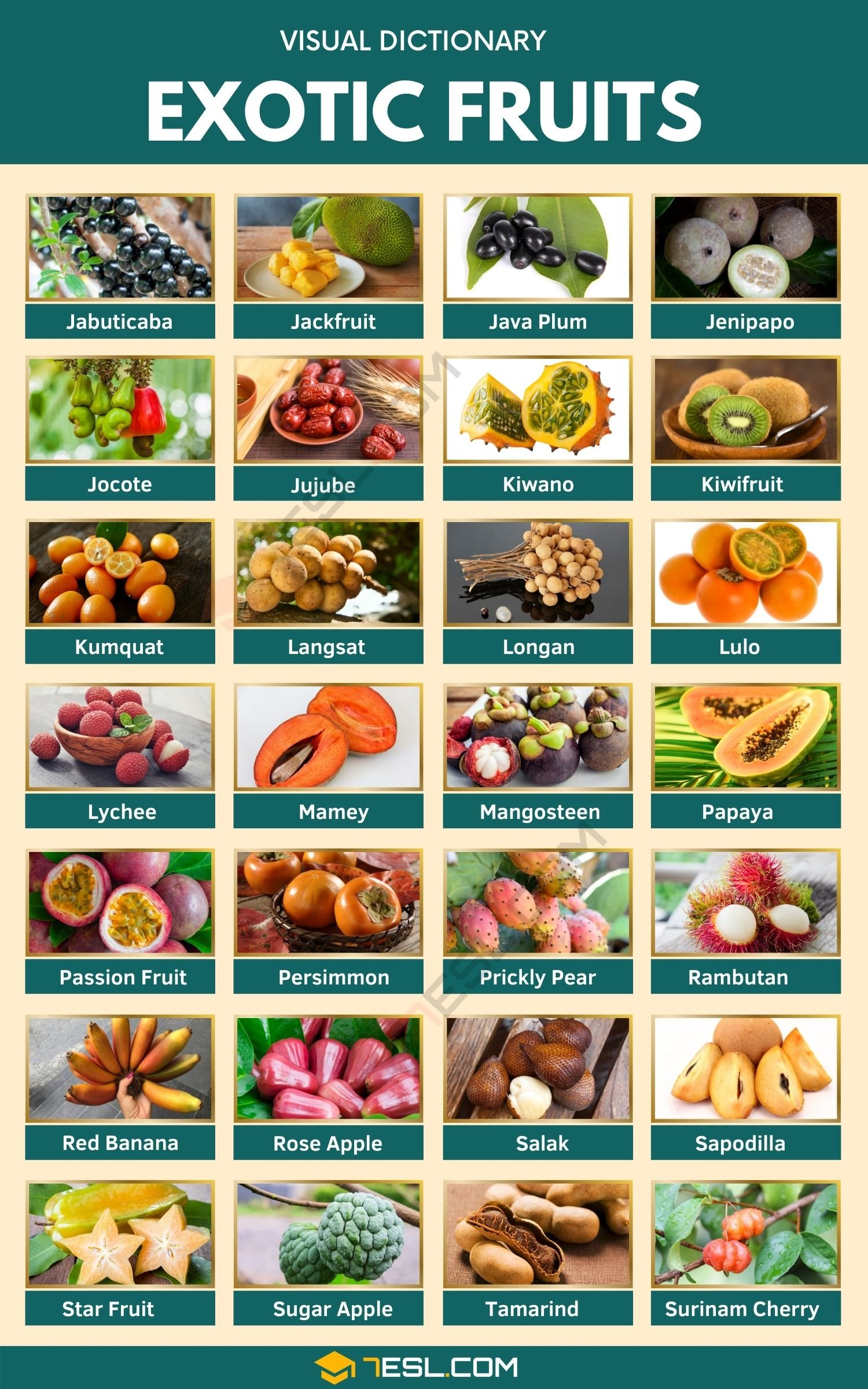 Exotic Fruits | List of 75+ Exotic Fruits You've Probably Never Heard Of