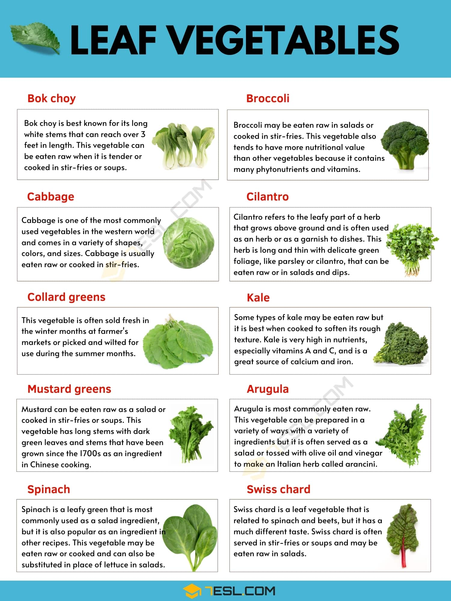Leaf Vegetable: The Complete Guide to Healthy Leafy Vegetables