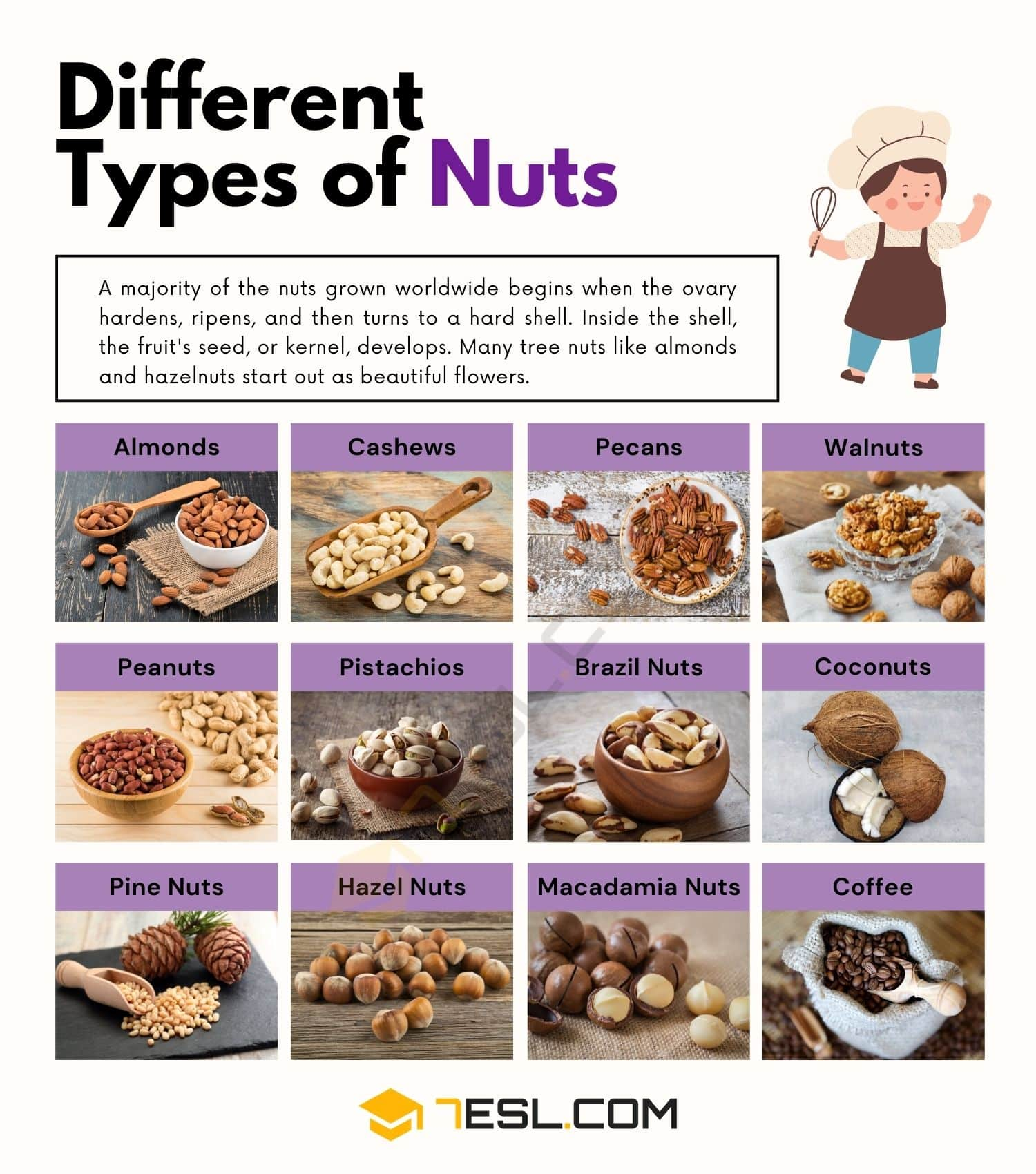 Types of Nuts